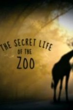 The Secret Life Of The Zoo: Season 3
