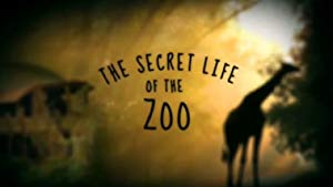 The Secret Life Of The Zoo: Season 6